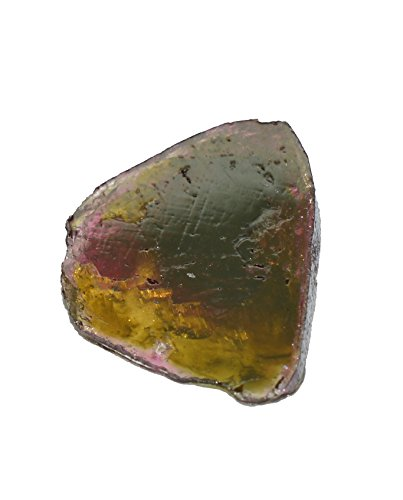 bicolore Tourmaline Pierre Précieuse Disque poli 3.14Cts