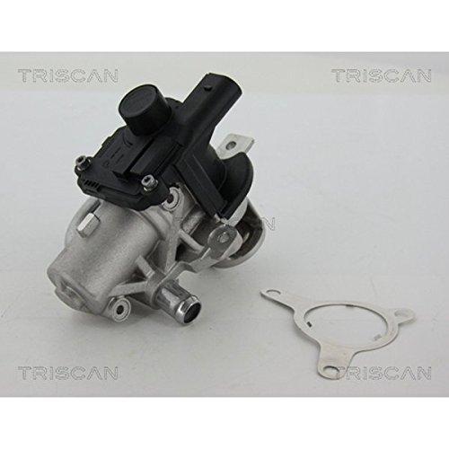Triscan 8813/25039/valvole AGR
