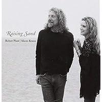 RAISING SAND (2 LP)