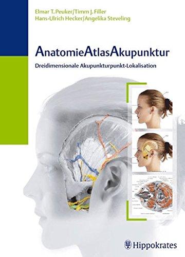 AnatomieAtlasAkupunktur: Dreidimensionale Akupunktur-Lokalisation