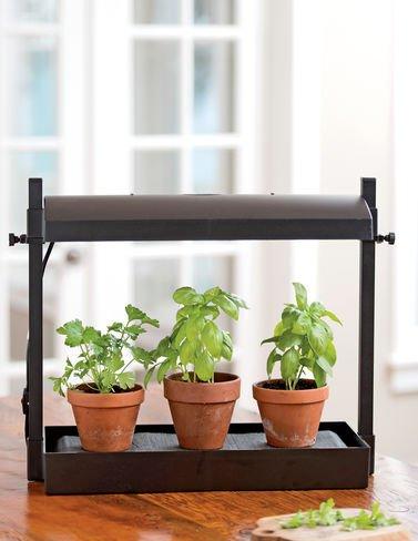 Gardeners Supply Company Micro Garden
