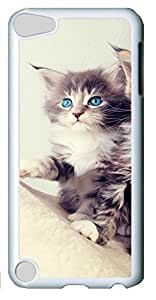 Fashion Customized Case for iPod Touch 5 Generation Cool White Plastic Case Back Cover for iPod Touch 5th with Cute Kittens Kimberly Kurzendoerfer