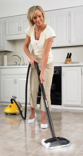 Wagner 905 1,500-Watt On-Demand Power Steamer and Cleaner