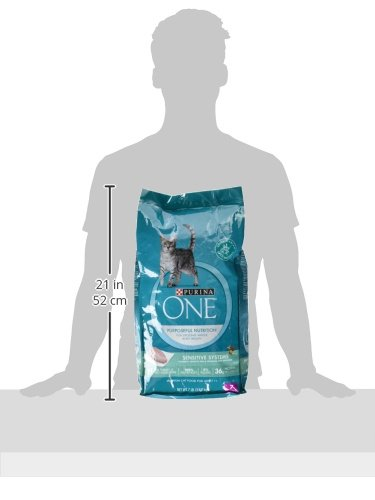 Purina ONE Sensitive Stomach & Skin Dry Cat Food