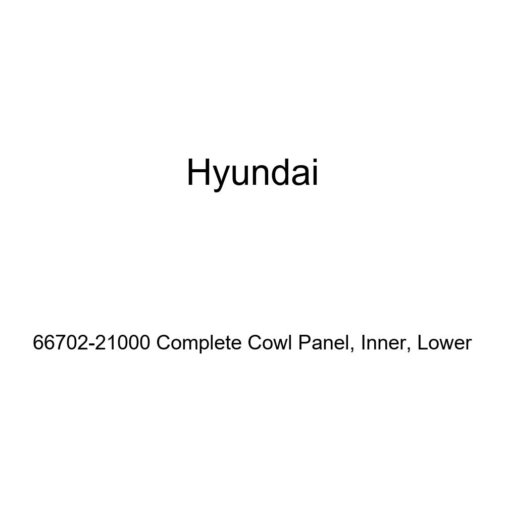 Genuine Hyundai 66702-21000 Complete Cowl Panel Lower Inner