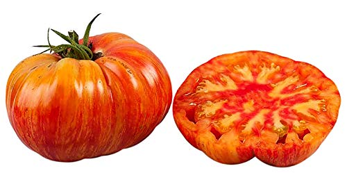 30+ ORGANICALLY GROWN GIANT 1-2 LB Mr. Stripey Tomato Seeds, Heirloom NON-GMO, Low Acid, Indeterminate, Open-Pollinated, Rich Flavor, From USA