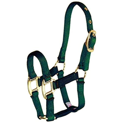 "Hamilton 3/4"" Nylon Adjustable Chin Horse Halter, Pony, Dark Green"