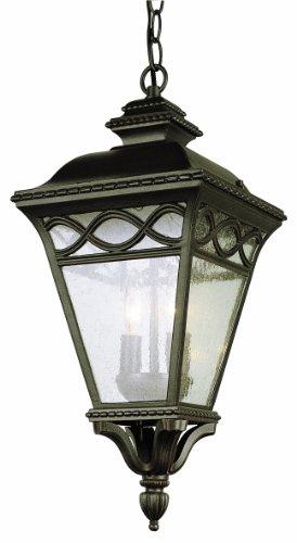 Estate Outdoor Hanging Lantern - Trans Globe Lighting 50517 RT Outdoor Candlewood 26