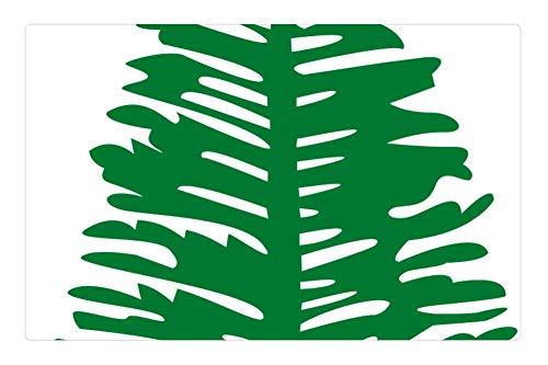 (Indoor Floor Rug/Mat (23.6 x 15.7 Inch) - Norfolk Island Pine Plant Tree)