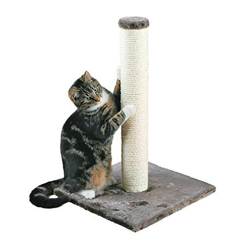 TRIXIE Pet Products Parla Scratching Post, Gray