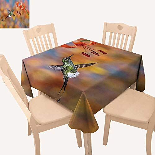 UHOO2018 Square/Rectangle Polyesters Tablecloth The Booted Racktail Feeding Nectar from Tiger Lily Blur Background Wedding Party,50x 50inch ()