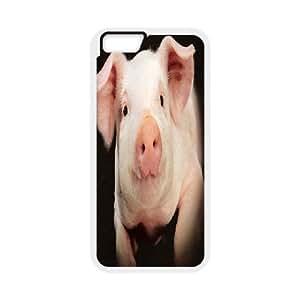 """Cute Piggy iPhone6 Plus 5.5"""" Cover, Cute Piggy Personalizedized Cover Case, iPhone6 Plus 5.5"""" Personalized Case"""