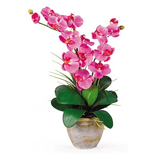 Dark Pink Double Stem Phalaenopsis Silk Flower Arrangement