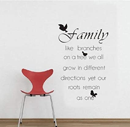 Amazon.com: Family Quote Wall Decor Art Sticker Decal for ...
