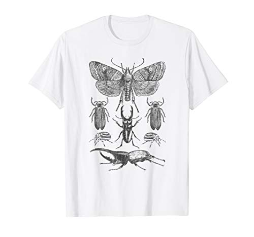 Insect Bug Collection Shirt Moth Stag Beetle Cicada T-Shirt -