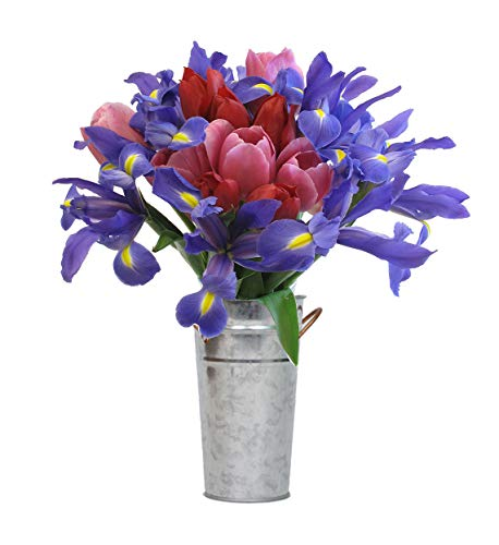 Iris Bouquet - Stargazer Barn - Petite Bouquet of Tulips & Iris with Vase - Farm Fresh