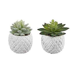 "Flora Bunda Mid Century Artificial Plants Set of 2 Artificial Succulent in Cement Pineapple Pot White Planter White 3.5"" 2"