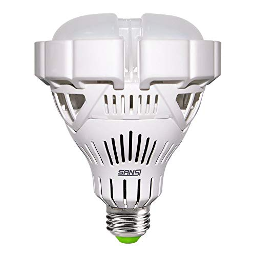 300 Watt Flood Light Bulb