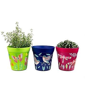 Pots Set De 3 Pots Colores Bleu Et Rose Vert Herbes Aromatiques