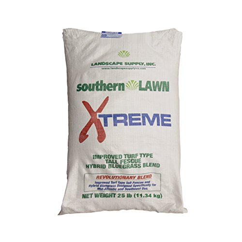 southernLAWN Xtreme Premium Blue Tag Certified Turf Type Tall Fescue Grass Seed, 25 Pounds (Best Turf Type Tall Fescue)