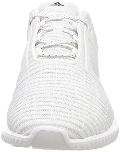 Adidas Running Climacool Schoenen Heren Ftwr Wit