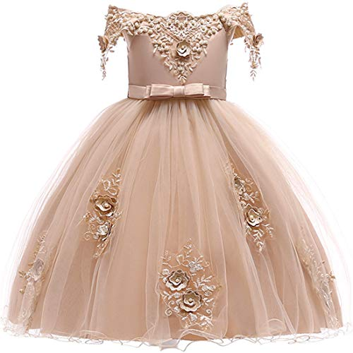 Dresses for Girls 4T Champagne Wedding Party Lace