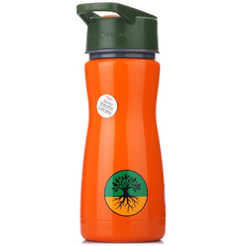 Eco Vessel Frost Kids Discontinued 2014 Insulated Stainless Steel Water Bottle with Flip Straw (13-Ounce, Orange with Tree) Old 2014 Style