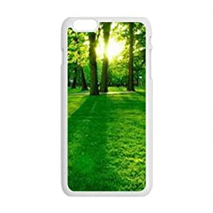 Personalized Creative Cell Phone Case For iphone 5C ,sunshing fresh green forest