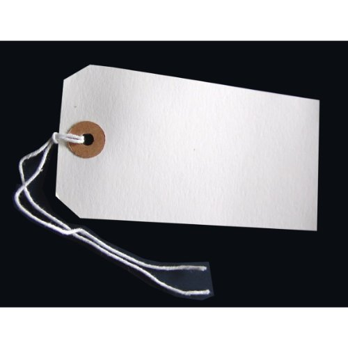 (250 LARGE REINFORCED WHITE STRUNG TAGS LUGGAGE LABELS 120 x 60mm)