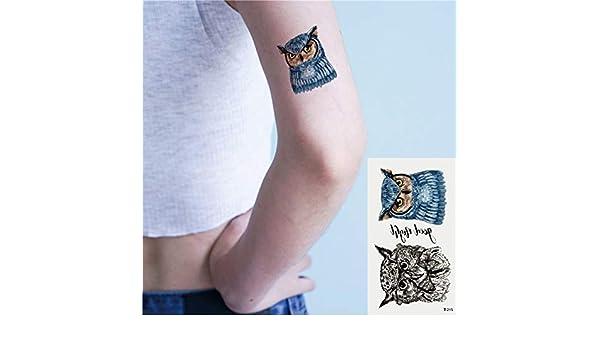Oottati 2 Hojas Pequeño Lindo Tatuaje Temporal Tattoo Búho: Amazon ...