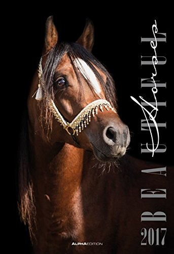 Beautiful Horses 2017 - Pferde - Bildkalender (34 x 50) - Tierkalender - by Nicole Hollenstein