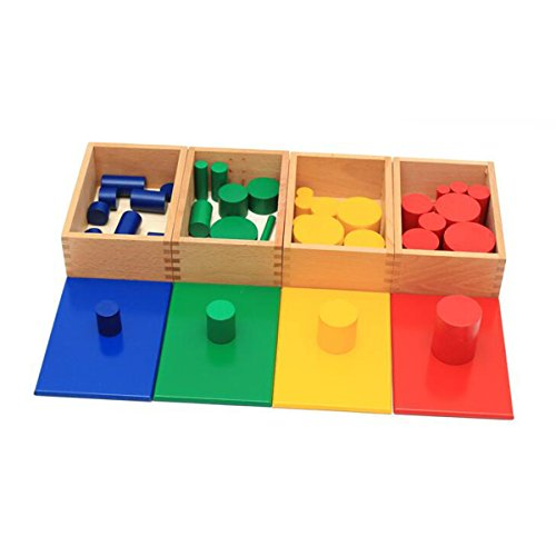 Montessori Sensorial Material Knobless Cylinders Kids Wooden Toy (Set of