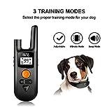 Dog Training Collar - Rechargeable Dog Shock Collar w/3 Training Modes, Beep, Vibration and Shock, IP65 Waterproof Training Collar, Up to 1000Ft Remote Range, 0~99 Shock Levels Dog Training Set