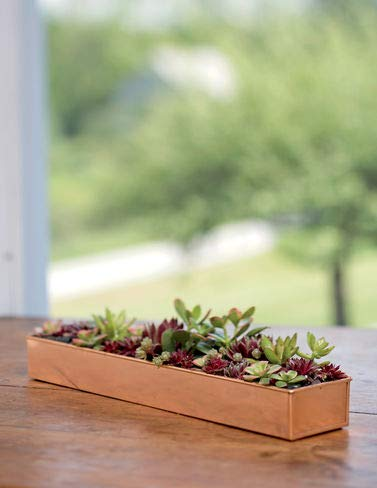 - Gardener's Supply Company Rectangular Copper Plant Tray, 18x4