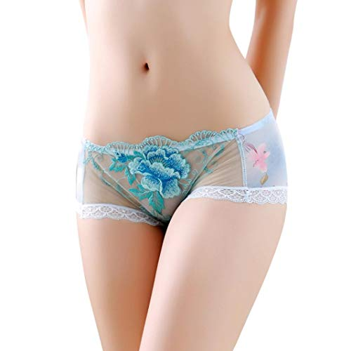 Drindf Women Embroidered Sheer Lace Panties Thongs G-String Lingerie Underwear (Cotton Embroidered Thongs)
