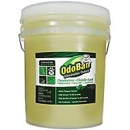 Best OdoBan Professional Deodorizer Disinfectant Eucalyptus
