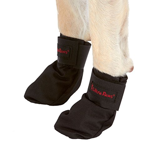X-large Doggie Slippers - 4