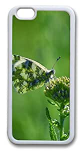 iphone 6 4.7inch Case iphone 6 4.7inch CasesArmenia Butterfly TPU Rubber Soft Case Back Cover for iphone 6 4.7inch White