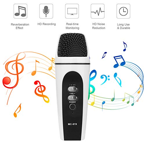 SUNY Mini Condenser Microphone Portable Handheld Mic Plug & Play Home Microphone Built-in Sound Card Echo for Studio Recording, Singing, Podcast, Broadcasting Compatible with iPad/PC/All Smartphone (Best Home Studio Sound Card)