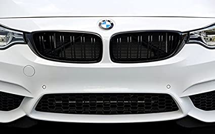 8c8e0260e46 Amazon.com  Matte Black Kidney Euro Sport Front Grill For BMW 4 ...