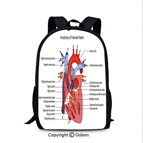 Lady Custom Backpack, Medical Structure of The Hearts Human Body Anatomy Organ, School Bag :Suitable for Men and Women, School, Travel, Daily use, etc.Coral Red Blue (Anatomy Of The Human Body Organs Female)