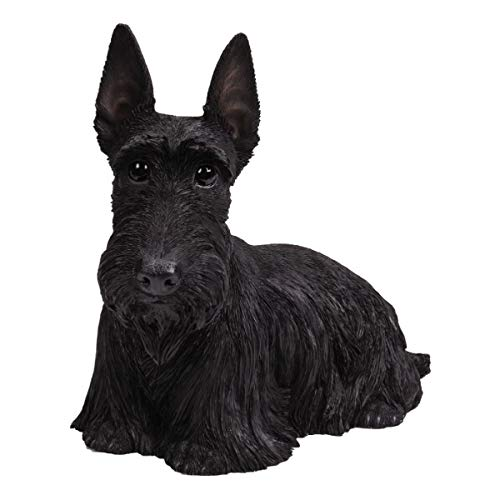 Black Long Hair Figurine - Pacific Giftware PT Realistic Large Size Statue Black Scottish Highlands Terrier Dog Long Hair Look Decorative Resin Figurine