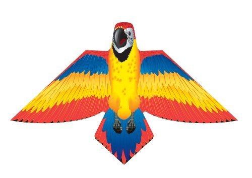 Parrot Kite - 3