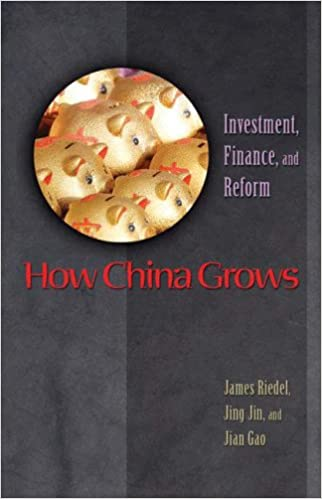 e9a4b8fb0 How China Grows: Investment, Finance, and Reform: 9780691125626: Business  Development Books @ Amazon.com