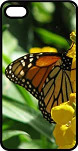 Monarch Butterfly Drinking Nectar Tinted Rubber Case for Apple iPhone 4 or iPhone 4s
