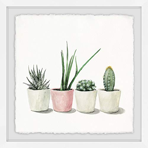 Marmont Hill Potted Succulents Framed Painting Print from Marmont Hill