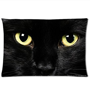 Black Cat Face Pillowcase 12 x 20 Inches Zippered Rectangle PillowCases Throw Pillow Covers