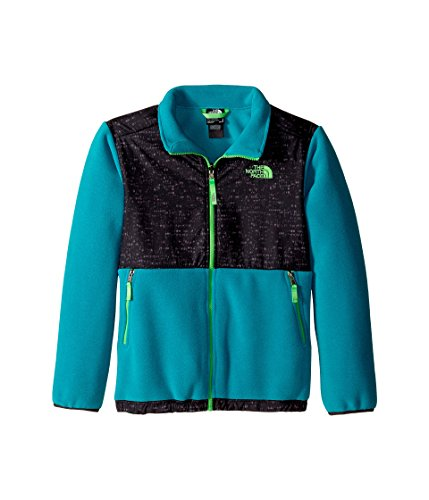 The North Face Kids Boys Denali Jacket (Little Big Kids), Recycled Enamel Blue, LG (14-16