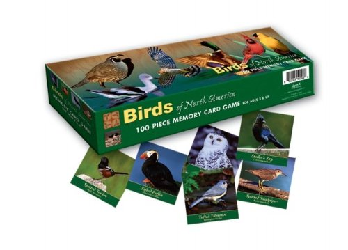 Bird Bingo - Memory Game Birds of North America