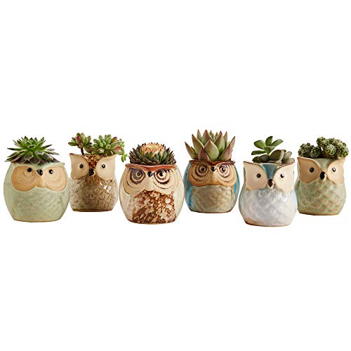 Buy cutest gifts for best friend